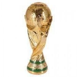 كأس العالم 13 سم
