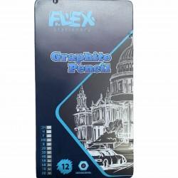 قلم رصاص جرافيك درجات طقم 12 قلم علبة حديد FLEX 3177