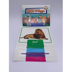 بطاقات نعليمية 21 كرت 15*20 عن حيوانات الغابة