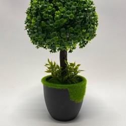 شجرة مع قوار 30 سم